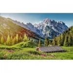 Castorland-53360 Eté dans les Alpes