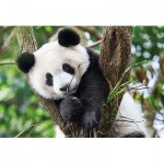 Clementoni-27997 WWF - Panda