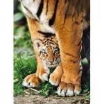 Clementoni-35046 Bébé Tigre du Bengale