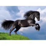 Clementoni-35071 Fresian Black Horse