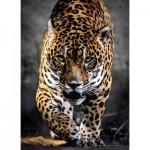 Clementoni-39326 Jaguar