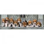 Clementoni-39435 Beagles
