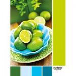 Clementoni-39492 Pantone - Jaune Citron