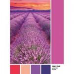 Clementoni-39493 Pantone - Violet