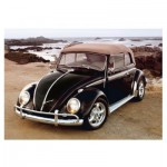 Dino-50242 VW Beetle on Beach