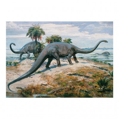Dino-53202 Dinosaures