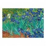 Dino-53216 Vincent Van Gogh - Les Iris