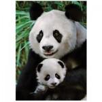 Dino-53256 Panda
