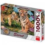 Dino-53277 Secret Puzzle - Bébés Tigres