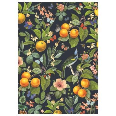 Dino-53285 Blooming Oranges