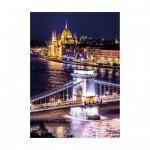 Dino-54125 Neon Puzzle - Budapest