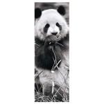 Dino-54544 Panda dans l'Herbe
