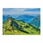 Dino-56313 Montagnes Suisses