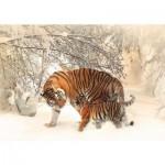 Deico-Games-75987 Tigres