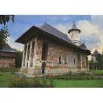 Deico-Games-76045 Monastère de Moldovita