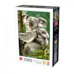 Deico-Games-76816 Koalas