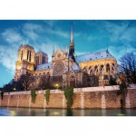 DToys-50328-AB34 France - Paris : Cathédrale Notre-Dame de Paris