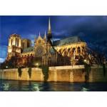 DToys-64301-NL08 Paysages nocturnes - France : Cathédrale Notre-Dame de Paris