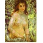 DToys-66909-RE04 Renoir Auguste - Nu au soleil