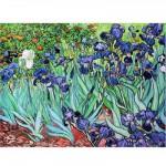 DToys-66916-VG03-(70241) Van Gogh Vincent - Iris
