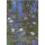DToys-67548-CM06 Monet Claude - Nymphéas