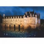 DToys-67562-FC03-(69535) Château de France - Château de Chenonceau