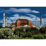 Dtoys-69252 Turquie - Istanbul : Hagia Sophia