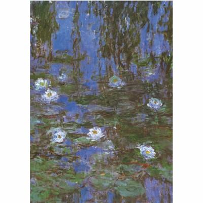 DToys-69641 Monet Claude - Nymphéas