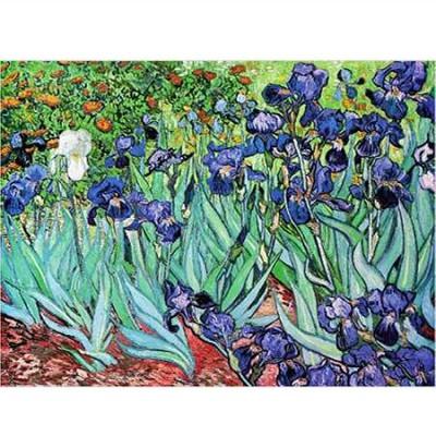 Dtoys-70241 Van Gogh Vincent - Iris