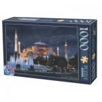 Dtoys-74829 Hagia Sophia, Istanbul, Turquie