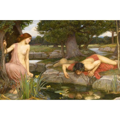 Dtoys-75048 Waterhouse John William : Echo et Narcisse