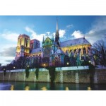 Dtoys-76069-FR02 Notre Dame de Paris, France