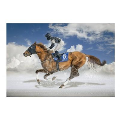 Educa-16307 Finale De White Turf - Saint Moritz