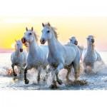 Educa-17105 White Horses at Sunset
