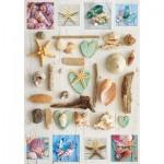 Educa-17658 Collage de Coquillages