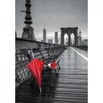 Educa-17691 Pont Brooklyn