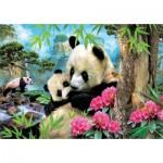 Educa-17995 Panda