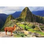 Educa-17999 Machu Picchu Perou