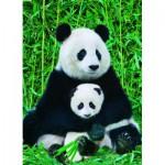 Eurographics-6000-0173 La Famille Panda