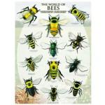 Eurographics-6000-0230 Le monde des abeilles