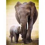 Eurographics-6000-0270 L'éléphant et l'éléphanteau