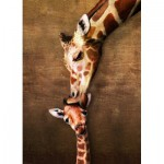 Eurographics-6000-0301 La maman girafe et son girafon