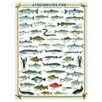 Eurographics-6000-0312 Poissons d'eau douce