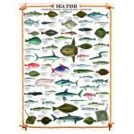 Eurographics-6000-0313 Les poissons