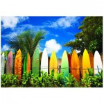 Eurographics-6000-0550 Le paradis des Surfers - Hawaii