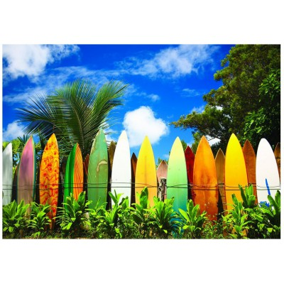 Eurographics-6000-0550 Le paradis des Surfers - Hawaii