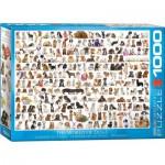 Eurographics-6000-0581 Un Monde de Chien