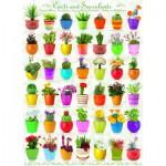 Eurographics-6000-0654 Cactus et Plantes Succulentes