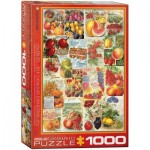 Eurographics-6000-0818 Catalogue des Semences de Fruits