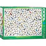 Eurographics-6000-0821 Le Monde des Oiseaux